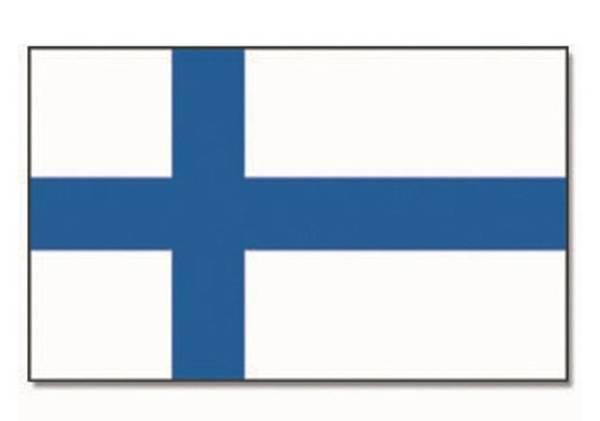 Bilde av Flagg, Finland - 90x150cm